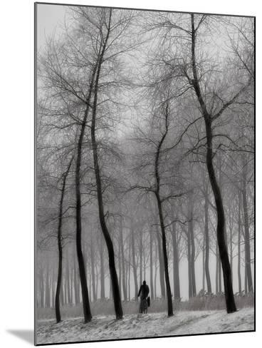 When Winter Knocks on the Door-Yvette Depaepe-Mounted Photographic Print