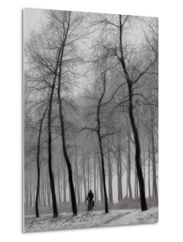 When Winter Knocks on the Door-Yvette Depaepe-Metal Print
