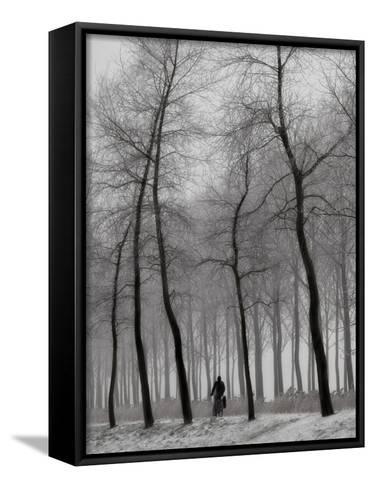 When Winter Knocks on the Door-Yvette Depaepe-Framed Canvas Print