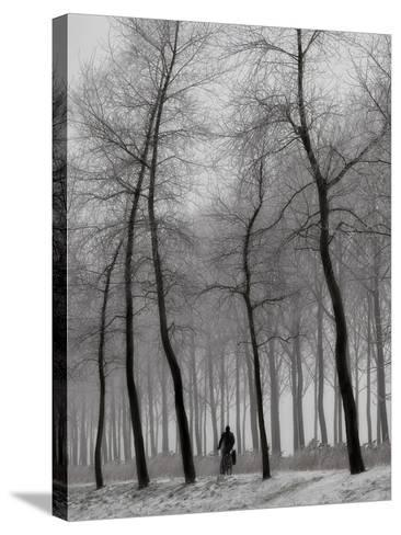 When Winter Knocks on the Door-Yvette Depaepe-Stretched Canvas Print