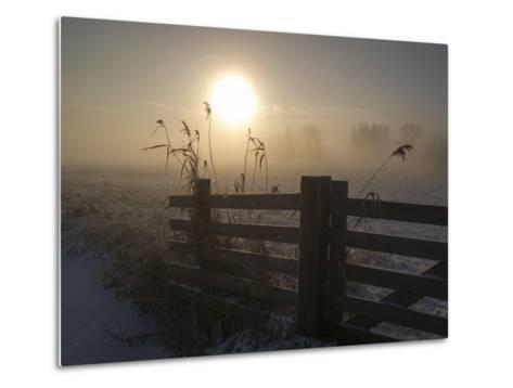 Winter Mood-Alida Van Zaane-Metal Print