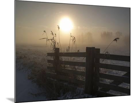 Winter Mood-Alida Van Zaane-Mounted Photographic Print