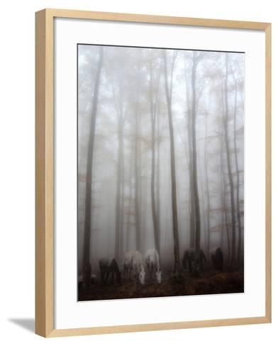 Fog-Francesco Martini-Framed Art Print