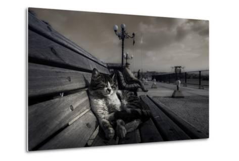 Sluggard-Ahmet Mustafa Arvas-Metal Print