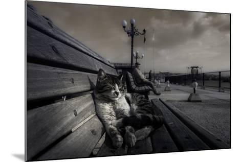Sluggard-Ahmet Mustafa Arvas-Mounted Photographic Print