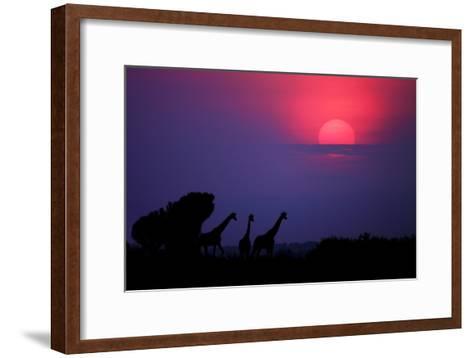 Sunrise in Uganda-Nicolás Merino-Framed Art Print