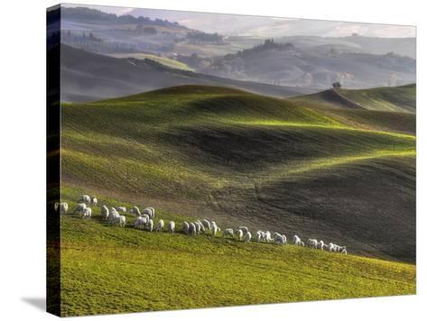 Pastoral-Roman Lipinski ?-Stretched Canvas Print