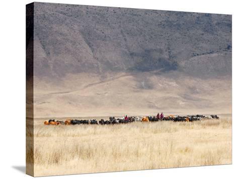 Incredible Maasai-Mathilde Guillemot-Stretched Canvas Print