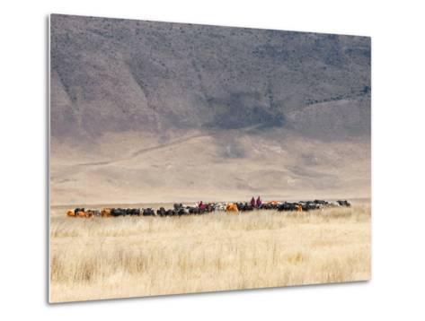 Incredible Maasai-Mathilde Guillemot-Metal Print