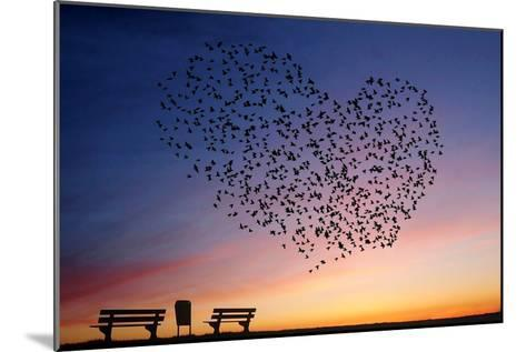 Love Is in the Air- Annemieke-Mounted Photographic Print