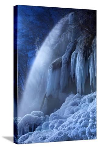 Frozen in the Moonlight-Franz Schumacher-Stretched Canvas Print