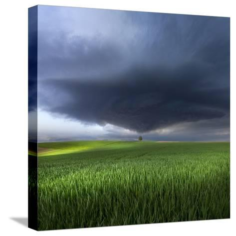 Thunderstorm Cell Over the Alb Plateau-Franz Schumacher-Stretched Canvas Print