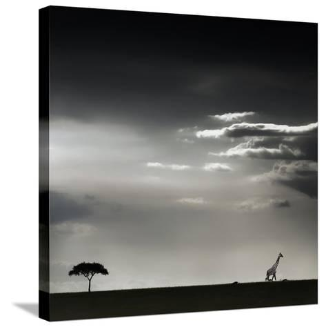 15 Minutes of Happiness-Piet Flour-Stretched Canvas Print