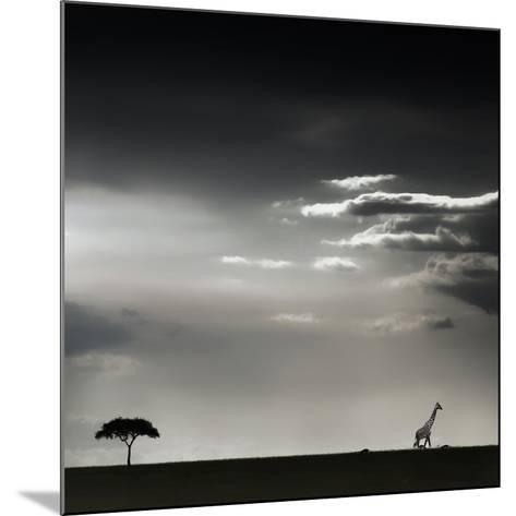 15 Minutes of Happiness-Piet Flour-Mounted Photographic Print