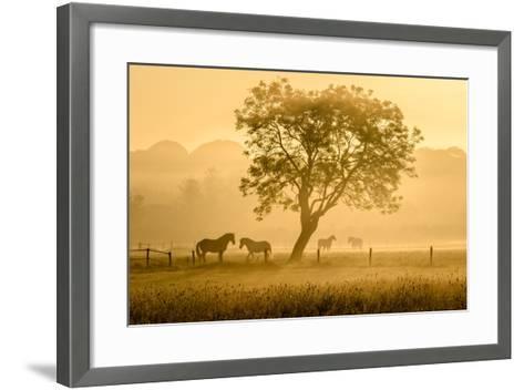 Golden Horses-Richard Guijt-Framed Art Print