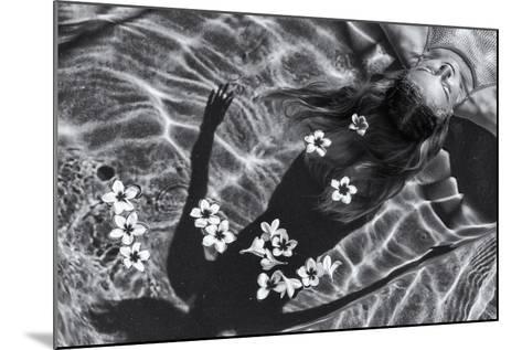 Frangipani Tree-Gloria Salgado Gispert-Mounted Photographic Print