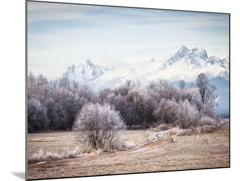 Autumn At the End-Peter Svoboda-Mounted Photographic Print
