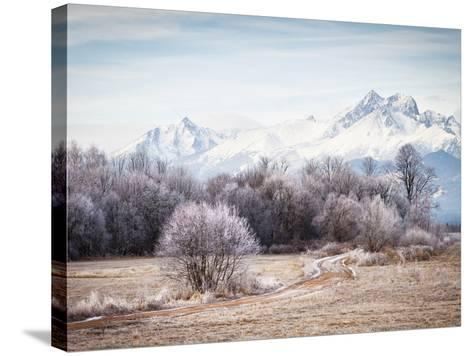 Autumn At the End-Peter Svoboda-Stretched Canvas Print