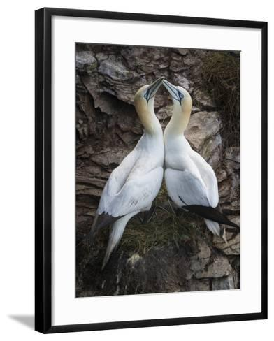 Afterplay-Greg Barsh-Framed Art Print