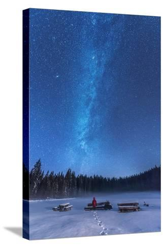 Under the Starry Night-Ales Krivec-Stretched Canvas Print