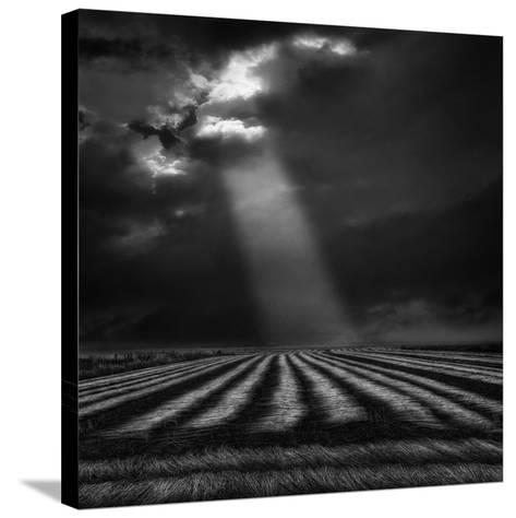 The Secure Ground of Home ...-Yvette Depaepe-Stretched Canvas Print