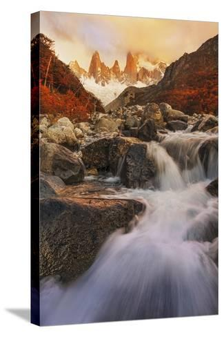 Autumn Impression-Yan Zhang-Stretched Canvas Print