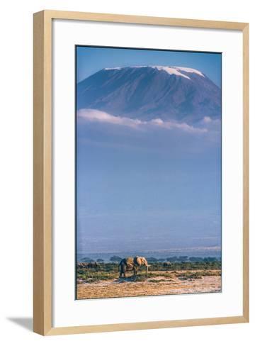 Kilimanjaro and the Quiet Sentinels-Jeffrey C. Sink-Framed Art Print