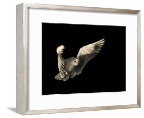 Air Breaking- Anthonyroberts-Framed Art Print