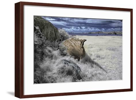 Past-Istvan Lichner-Framed Art Print