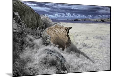 Past-Istvan Lichner-Mounted Photographic Print
