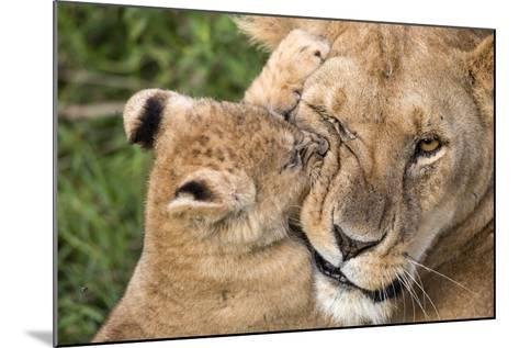 Mother Love-Alessandro Catta-Mounted Photographic Print