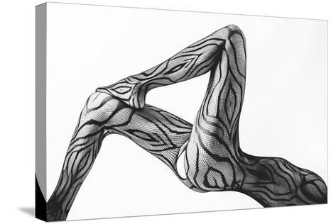 Take ...-Doris Reindl-Stretched Canvas Print