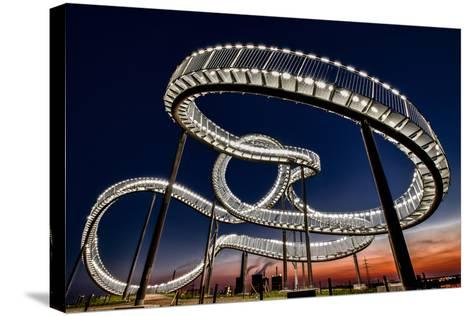 Tiger and Turtle At Dawn-Holger Schmidtke-Stretched Canvas Print