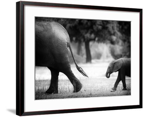 Following in Your Footsteps-Giovanni Casini-Framed Art Print