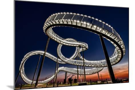 Tiger and Turtle At Dawn-Holger Schmidtke-Mounted Photographic Print