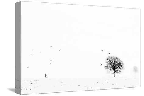 Ballade Ardennaise-Eric Drigny-Stretched Canvas Print