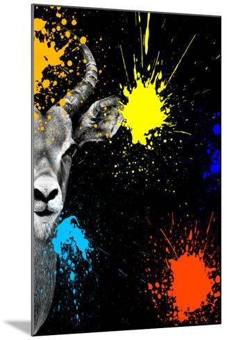 Safari Colors Pop Collection - Antelope Impala Portrait-Philippe Hugonnard-Mounted Giclee Print