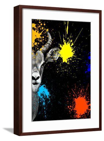 Safari Colors Pop Collection - Antelope Impala Portrait-Philippe Hugonnard-Framed Art Print