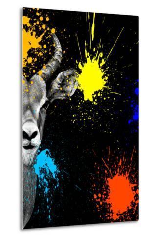 Safari Colors Pop Collection - Antelope Impala Portrait-Philippe Hugonnard-Metal Print