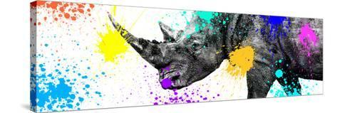 Safari Colors Pop Collection - Rhino Portrait V-Philippe Hugonnard-Stretched Canvas Print