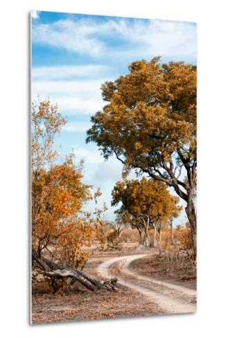 Awesome South Africa Collection - Savanna Landscape III-Philippe Hugonnard-Metal Print