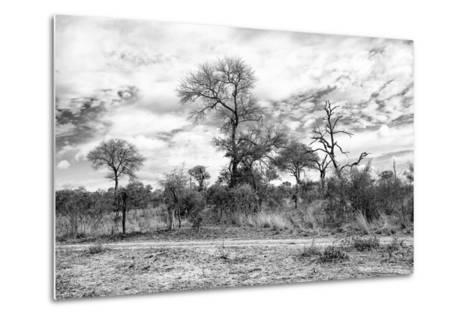 Awesome South Africa Collection B&W - African Landscape II-Philippe Hugonnard-Metal Print