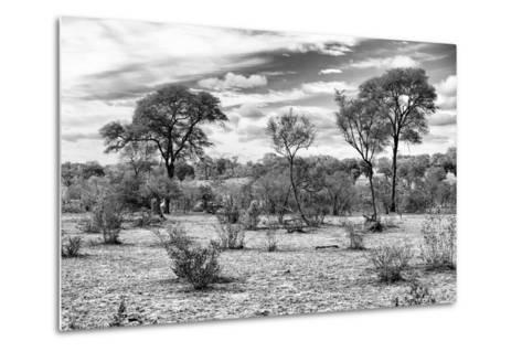 Awesome South Africa Collection B&W - African Landscape IV-Philippe Hugonnard-Metal Print
