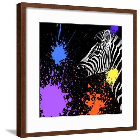 Safari Colors Pop Collection - Zebra II-Philippe Hugonnard-Framed Art Print