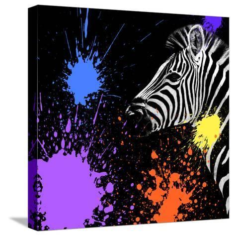 Safari Colors Pop Collection - Zebra II-Philippe Hugonnard-Stretched Canvas Print