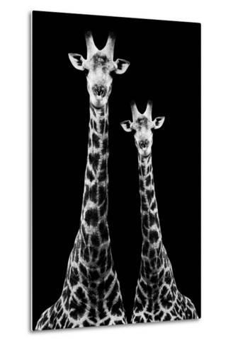 Safari Profile Collection - Two Giraffes Black Edition II-Philippe Hugonnard-Metal Print