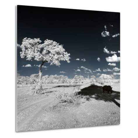 Awesome South Africa Collection Square - Another Look Savannah-Philippe Hugonnard-Metal Print
