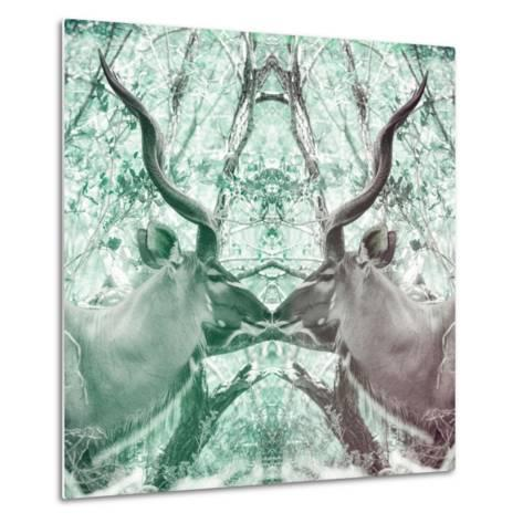 Awesome South Africa Collection Square - Reflection of Greater Kudu - Coral Green & Dimgray-Philippe Hugonnard-Metal Print