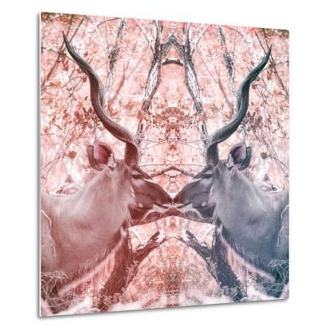 Awesome South Africa Collection Square - Reflection of Greater Kudu - Red & Dimgray-Philippe Hugonnard-Metal Print