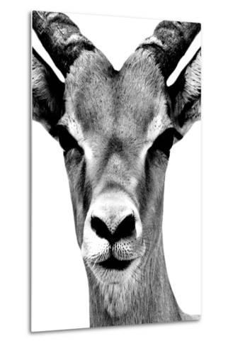 Safari Profile Collection - Portrait of Antelope White Edition-Philippe Hugonnard-Metal Print